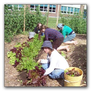 kids gardening at school